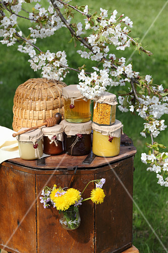 Honey and bee pollen in glass jars, and a flowering cherry branch