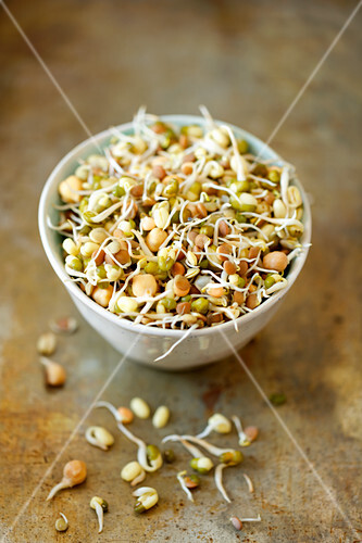 Chickpeas and mung bean sprouts