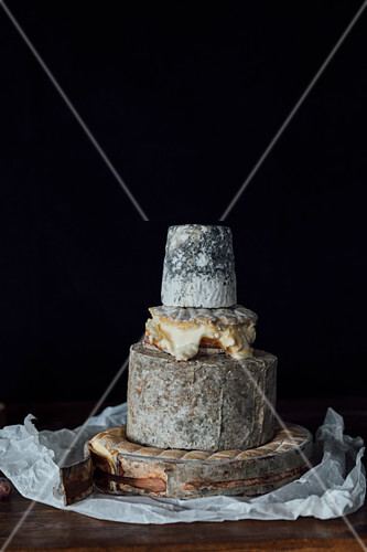 Uk cheese - Rollright (Cotswolds), Fellstone (Cumbria), Winslade (Hampshire) and Dorstone (Herefordshire)