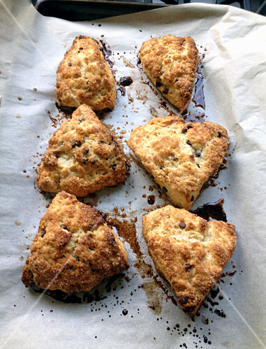 Scones on baking paper (England)
