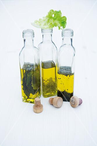 Bottles of lime oil, bay leaf oil and basil leaf oil