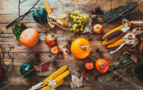 Herbstliches Stillleben mit Kürbissen, Maiskolben und Obst auf Holztisch