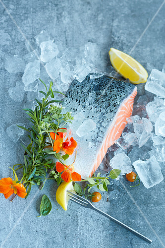 Raw salmon with fresh herbs on ice