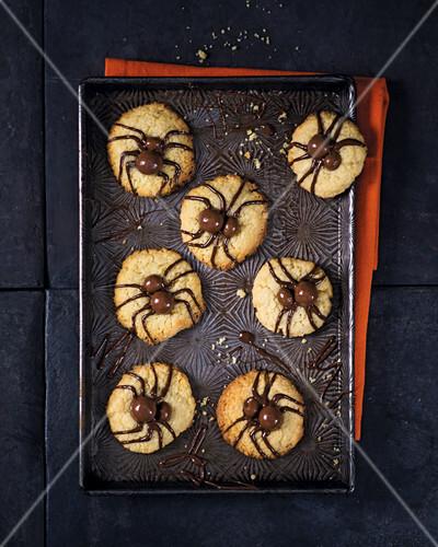 Spider biscuits