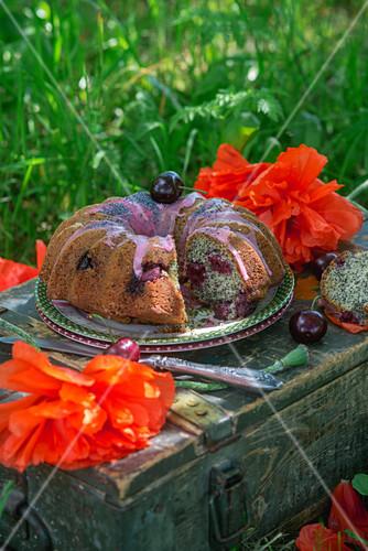 Poppy seed cake with cherries and cherry glaze