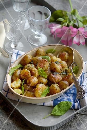 Bratkartoffeln mit Salbeibutter und Olivenöl