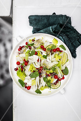 Fennel salad with pomegranate seeds and redcurrants