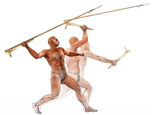Spear-thrower, illustration
