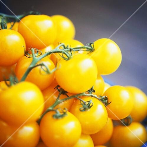 Small yellow vine tomatoes