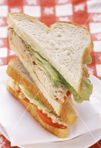 Tuna Sandwich on White Bread