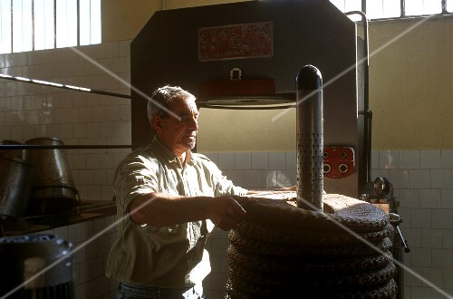 Olive oil production : the bags are stacked & pressed