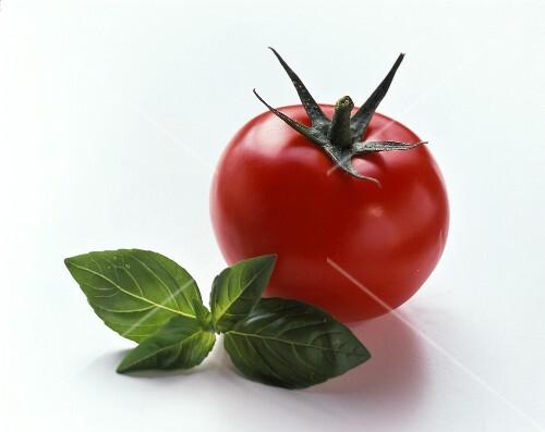 One Ripe Tomato
