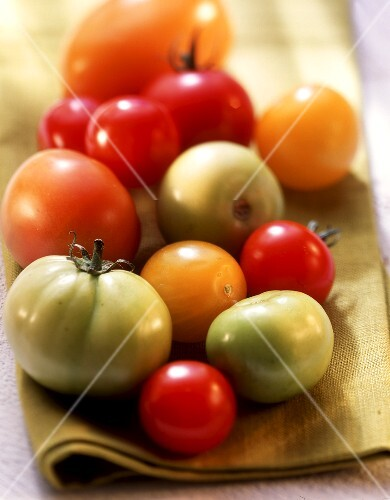 Various types of tomatoes (green, yellow, red) on yellow cloth