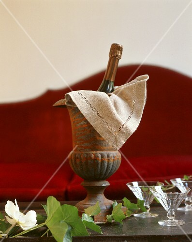 Champagne bottle in cooler with glasses and trailing ivy