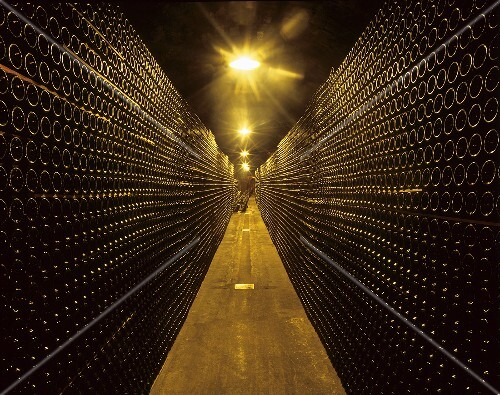 Cellar of Piper-Heidsieck, Epernay, Champagne, France