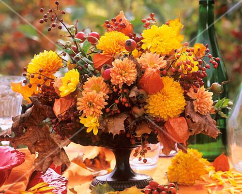 Dahlias, chrysanthemums, Physalis, rose hips & oak leaves