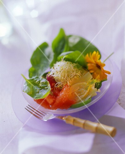 Grapefruit and Spinach Salad with Fennel and Sprouts