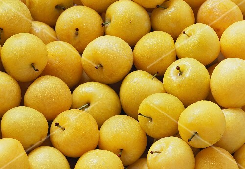 Many Yellow Plums