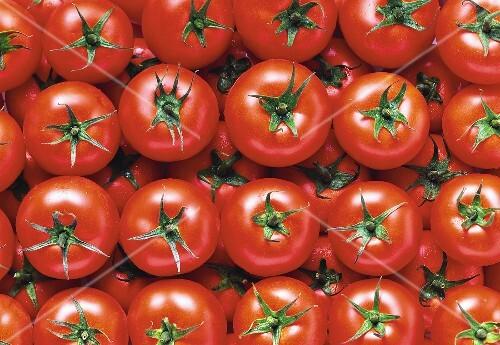 Several Salad Tomatoes; Overhead