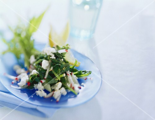 Spinach and herb salad with sheep's cheese and radishes