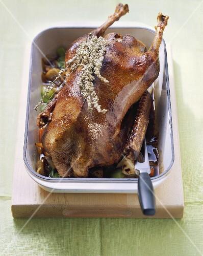 Classic roast goose