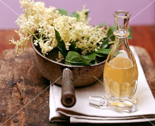 Still life with elderflower syrup and elderflowers