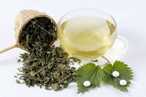 Nettle leaves, fresh and dried, tablets, tea