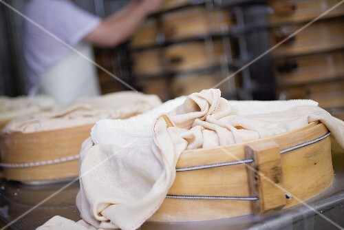 Wrapped cheeses being stored in round wooden moulds