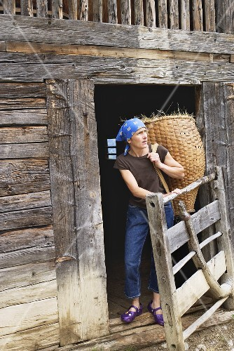 Modern farmer in front of old log cabin carrying a basket of hay on her back