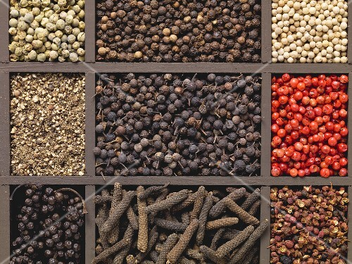 Various types of pepper in a type case