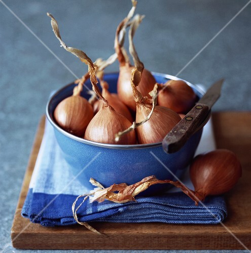 Shallots in blue bowl with knife