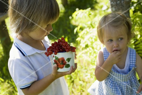 Girl and boy eating redcurrants in the open air