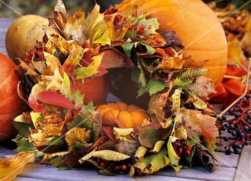 Wreath of autumn foliage: Acer, Liquidambar, Amelanchier