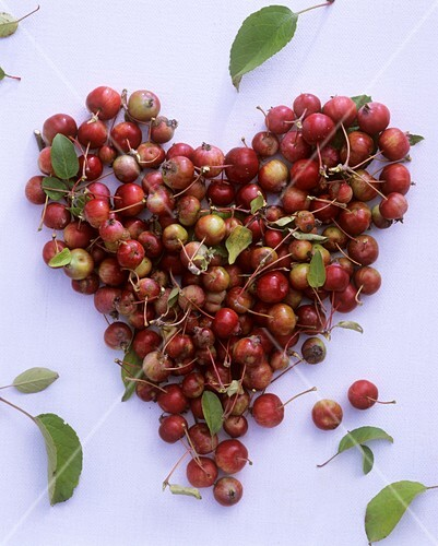 Ornamental apples forming a heart