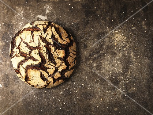 Rye bread from above