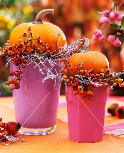 Pumpkins & rose hips on coloured beakers as table decoration