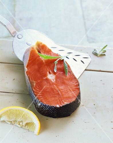 Wild salmon cutlet