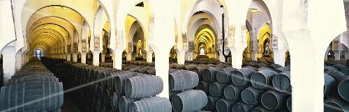 Pedro Domecq Bodega 'La Mezquita', Jerez de la Frontera, Spain