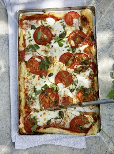 Summery tomato and goat's cheese tart with capers