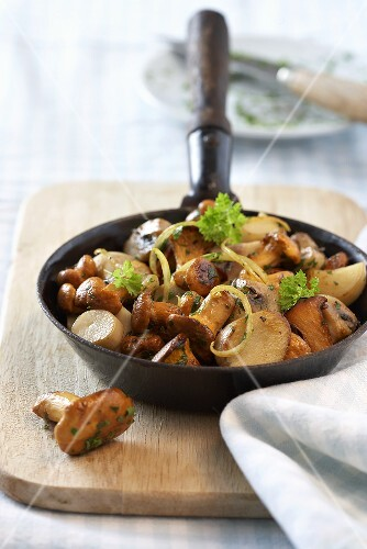 Fried mushrooms with cream sauce