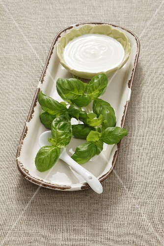 Basil and yoghurt (ingredients for facial mask)