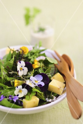Spring salad with edible flowers and cheese