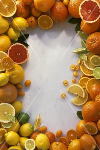 Zitrusfrüchte um den Bildrand gelegt