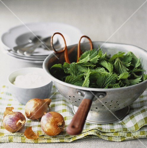 Ingredients for nettle soup