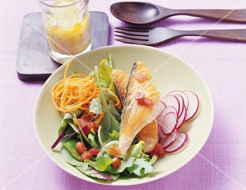 Salmon steak on vegetable salad
