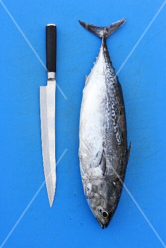A bonito and a kitchen knife