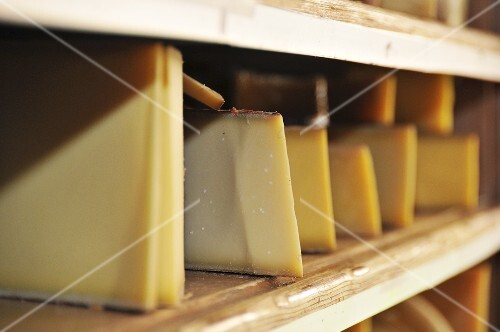 Various types of hard cheese (Gruyere, Beaufort, Appenzeller) in wooden shelves