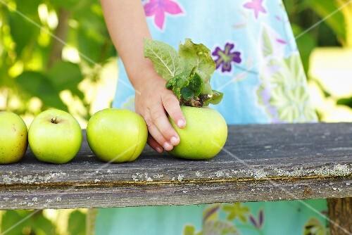 A girl placing green apples on a garden bench