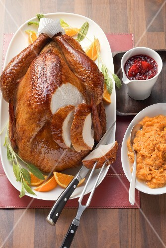 Thanksgiving turkey with cranberry sauce & mashed sweet potato