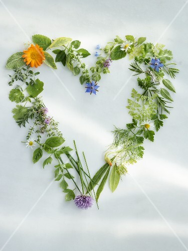 Herbs forming a heart